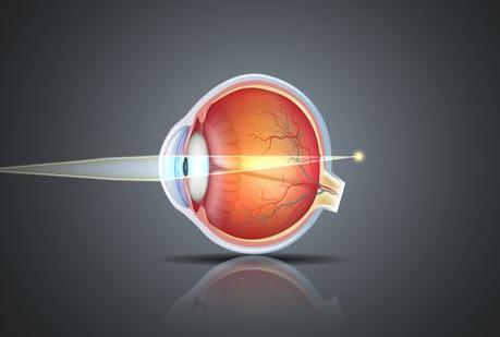 远视眼和近视眼的区别